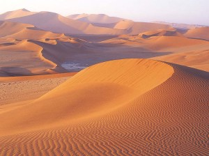 desert-24.jpg